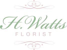 H Watts Florist, Plymouth